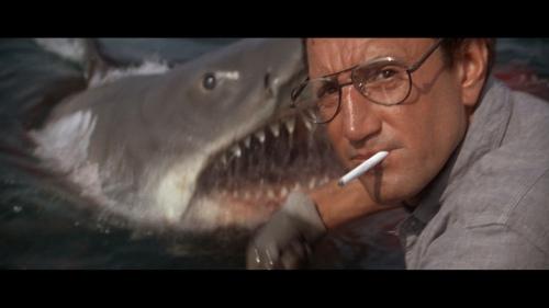 """Scheider in """"JAWS."""" I knew Spielberg's 1975 genre-starter would be No. 1."""